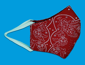 Reusable Printed Face Mask - Red, Levi's. April 2020