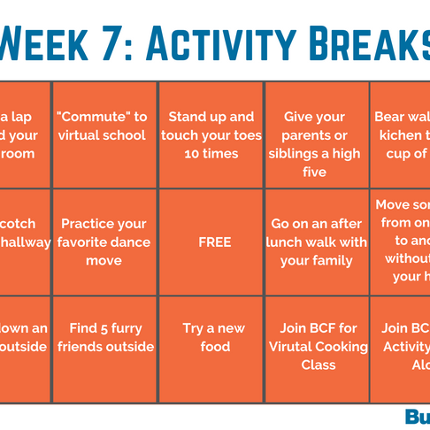 Week 7: Activity Breaks