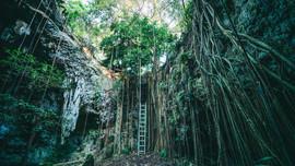 Cenote 1.jpg