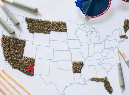 8 estados dizem sim para maconha nos Estados Unidos