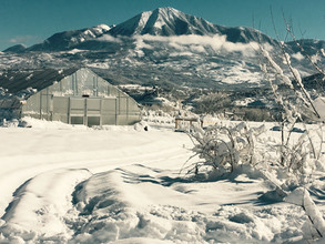 The farm after a winter storm