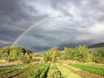 Rainbow and an ominous sky