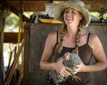 Kristin and Betty, our favorite Barred Rock hen