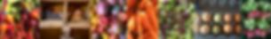 Screen Shot 2020-01-30 at 3.17.01 PM.png