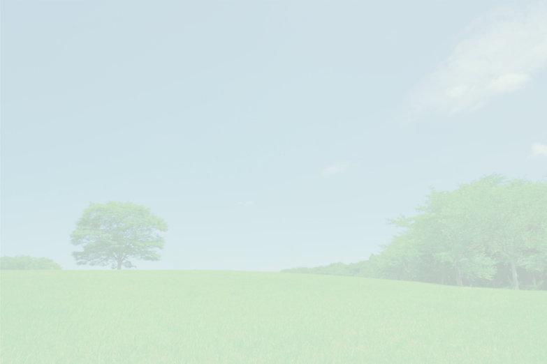 背景2-1.jpg
