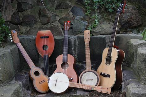 Ukulele Musical Instruments
