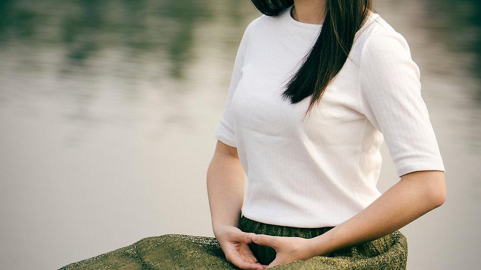 Meditation Techniques eBook