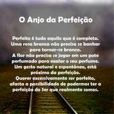 Anjo Perfeição.png
