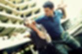 martial-arts-2481472_640.jpg