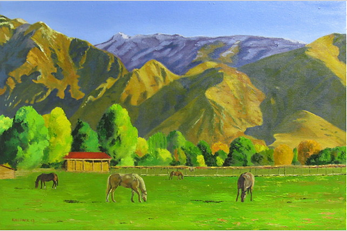 Peaceful Pasture in Springville