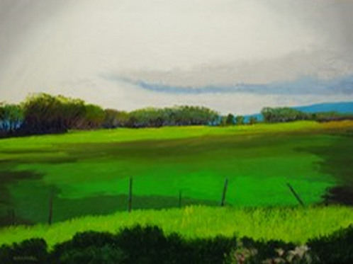 Nikki's Meadow