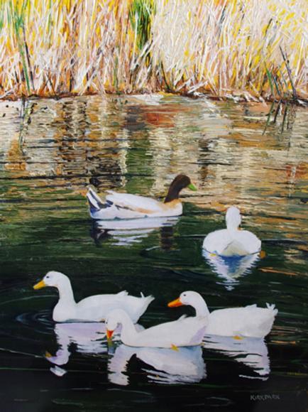 Five Ducks on Brooks Pond