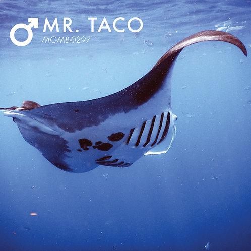 Adopt a Manta - Mr Taco