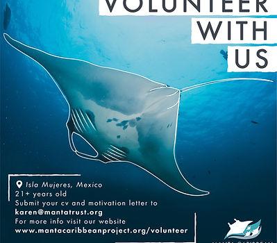 Volunteerwith us-01_edited.jpg