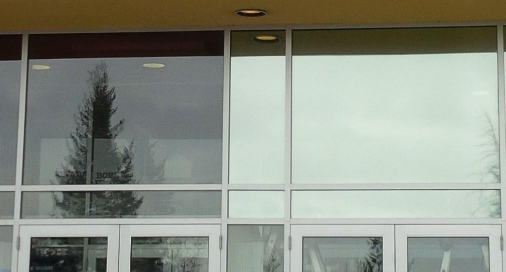 Tinted Windows at Sportchek