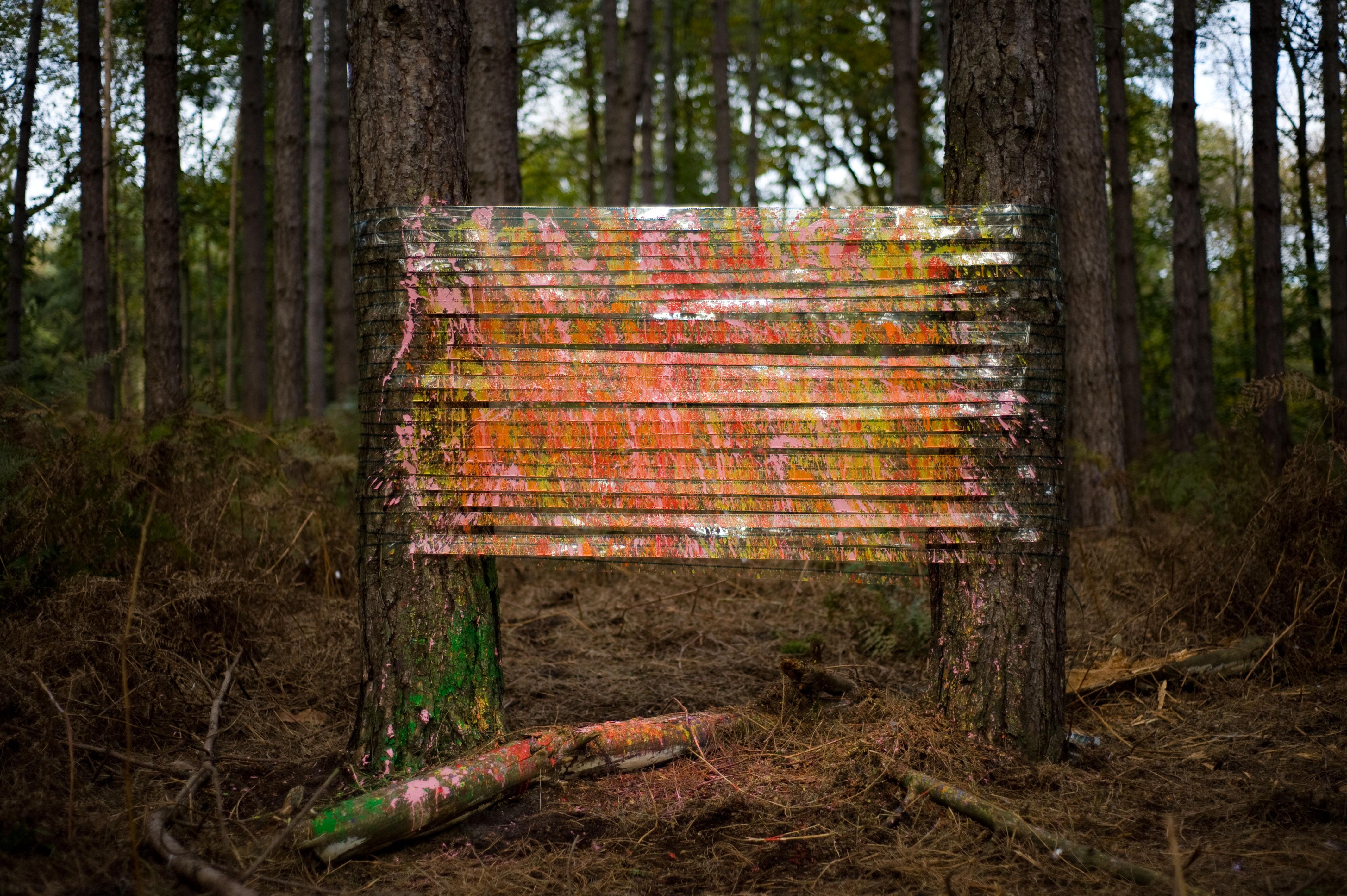 Installation Forêt de Montmorency