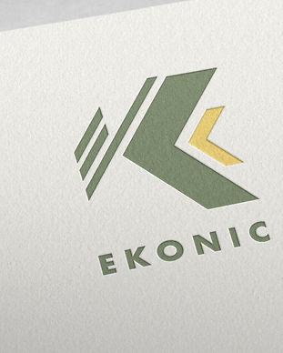 Ekonic_1.jpg