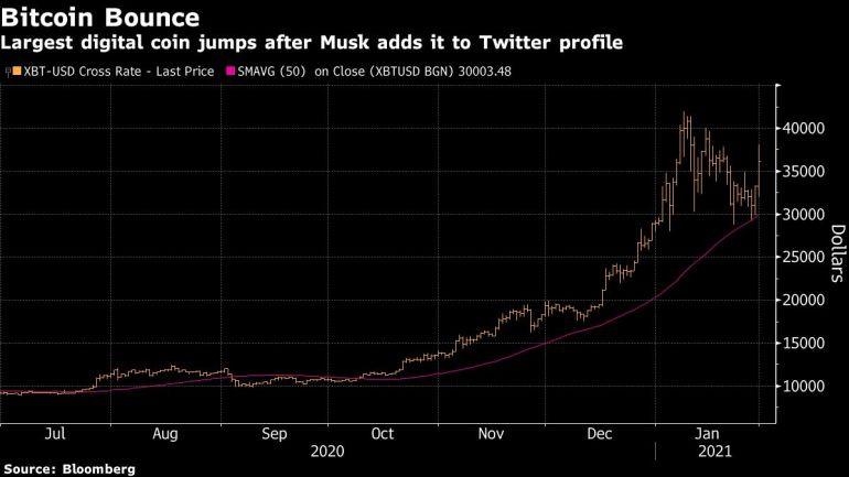 Bitcoin Bounce Graph