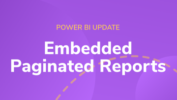 October 2021 Power BI Update - Embedded Paginated Reports Visual with NetSuite Data