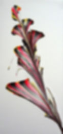 Acrylic 1 - Copy.jpg