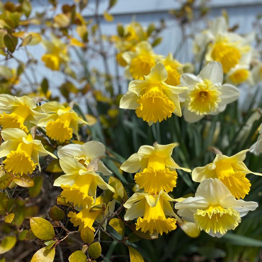 Sunday Service—Flower Communion (Hybrid Format)