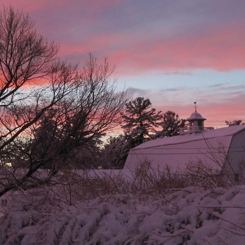 Sunday Service—The Star Over the Barn: Making Peace With COVID Christmas