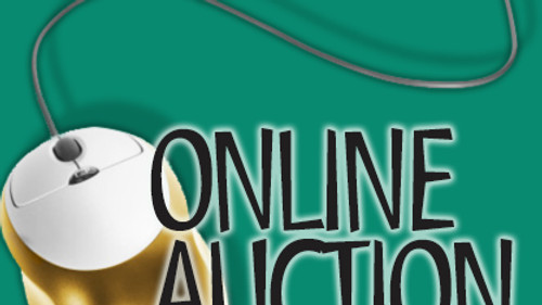 Auction Fundraiser for ECCO: May 16-23