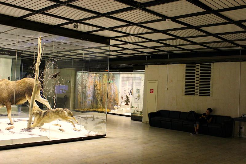 Наброски в Дарвиновском музее