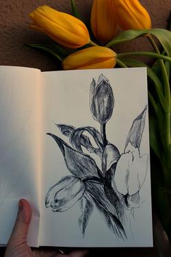 Yellow flowers/Желтые цветы