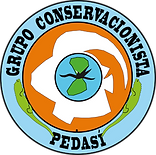 Logo GRUCOPE.png