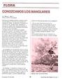 Conozcamos los manglaresFUNDPANAMA.png
