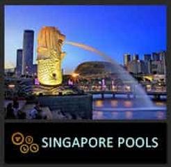 icon-SINGAPORE.jpg