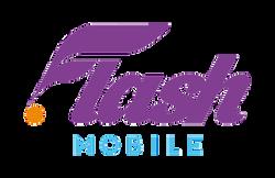 flash mobile-05