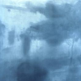 House (blue bush)