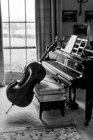 cellist, cello teacher, wedding musician