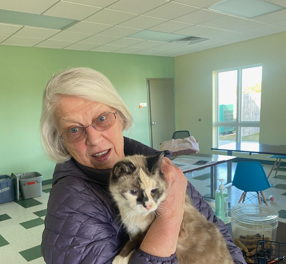 Yeti has been adopted