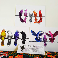 """11"""" x 8.5"""" Pride Birds and Other Assorted Prints"""