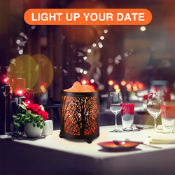 Salt Lamp Air Purifier