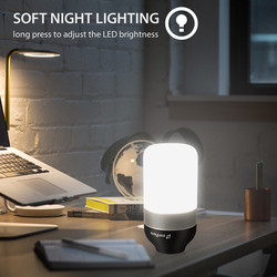 LED Smart Speaker Light