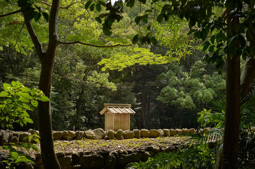 月讀宮の森