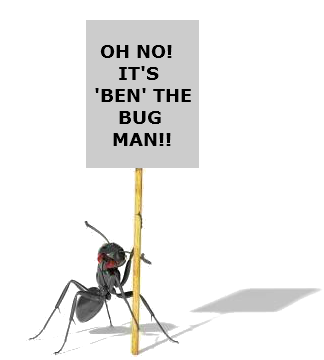 Ant holding sign