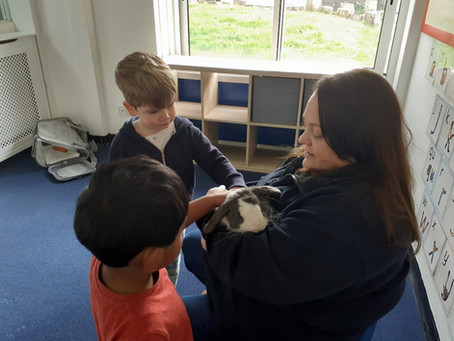 We had a hoppy visitor to the classroom - 24th March