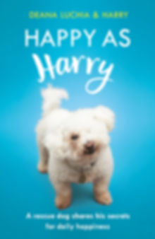 Happy As Harry cover.jpg