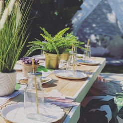 Tropical luxe picnic