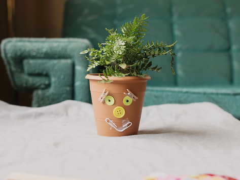 Wild Hair Planters - Recycled Craft