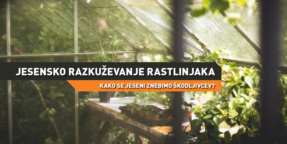 JESENSKO-RAZKUŽEVANJE-rastlinjaka.jpg