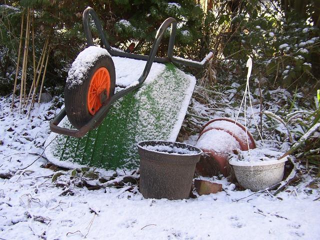 zima ni čas za lenarjenje