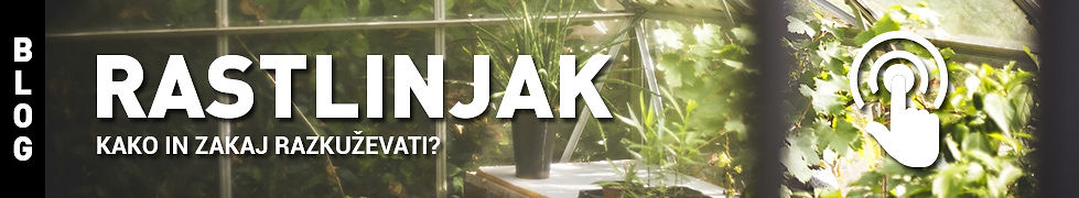 Rastlinjak.jpg