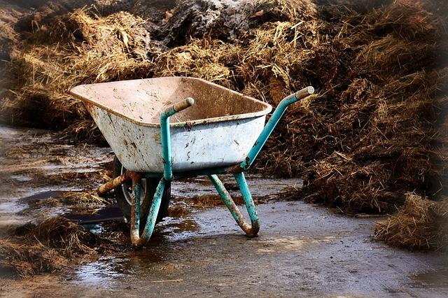 Znate pravilno uporabiti gnojila?