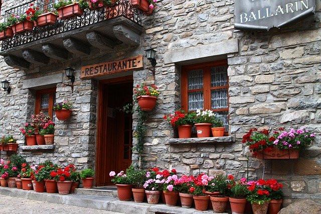 Tla, balkoni ali okenske police, begonije povsod